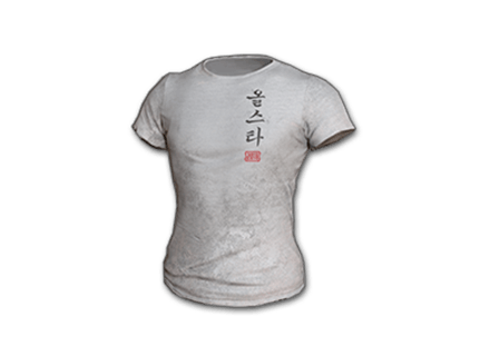 PUBG 2018 PUBG ALL-STAR T-shirt (Korean) skin icon