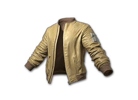 Bomber Jacket (Mustard): icon